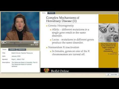 Molecular Basis of Heredity   Part 3  Genetic Variation