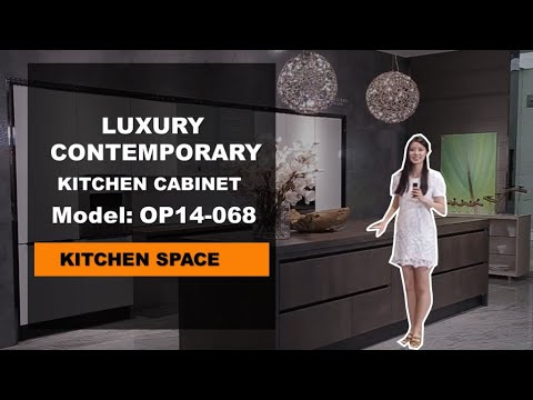 Luxury Contemporary Kitchen Cabinets from OPPEIN