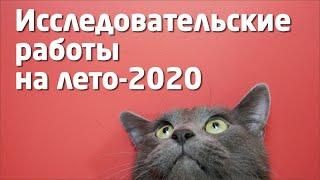 VIKENT.RU:  ИССЛЕДОВАТЕЛЬСКИЕ РАБОТЫ на Лето-2020 года
