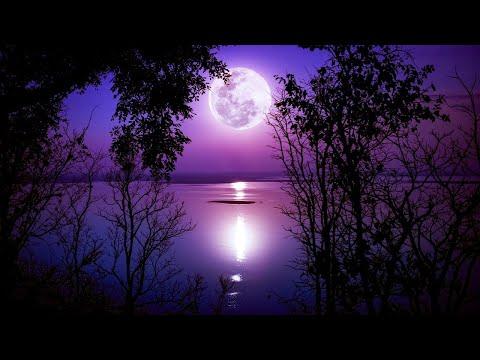 Sleep Music 24/7, Calming Music, Relaxing Music, Sleep Meditation, Insomnia, Study Music, Zen, Sleep