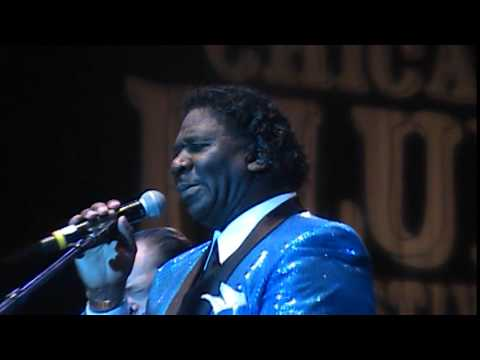 2015 Chicago Blues Fest   Muddy Waters Tribute (Feat. Mud Morganfield, John Primer)