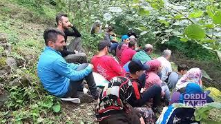 Fındık toplama türkülerle güzel