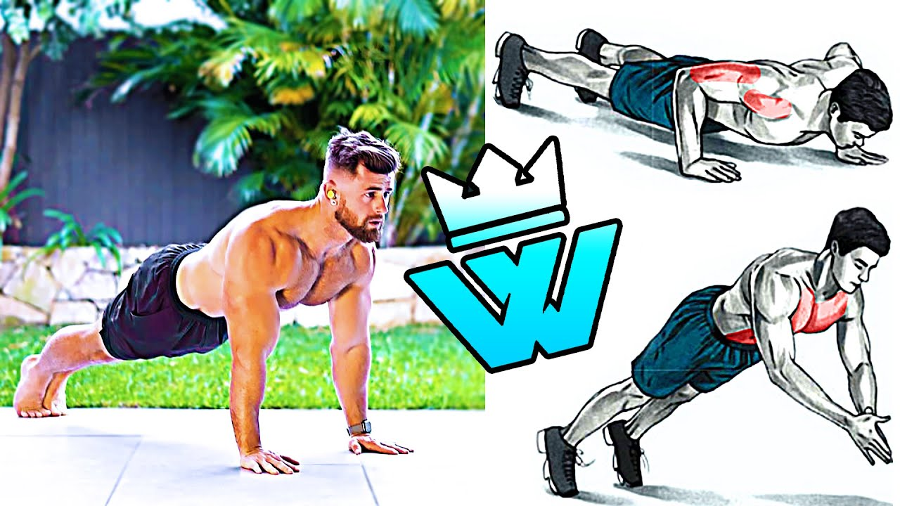 BODYWEIGHT WORKOUT only ABS, CHEST, ARMS