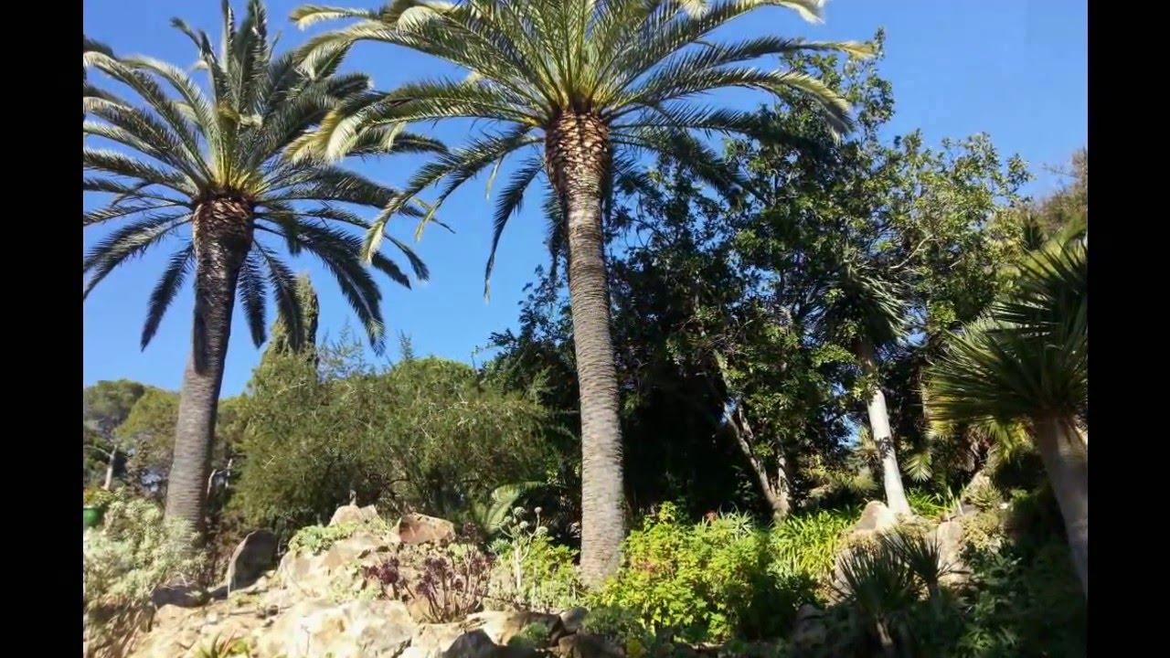 Costa brava jardins botaniques marimurtra botanical gardens - Marimurtra Botanical Garden Blanes Spain