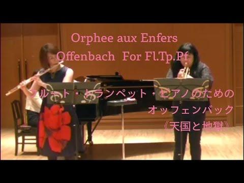 Q a 65 doovi for Wmf offenbach