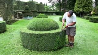 видео Сад как искусство | Садовый дизайн,Техника и Растения