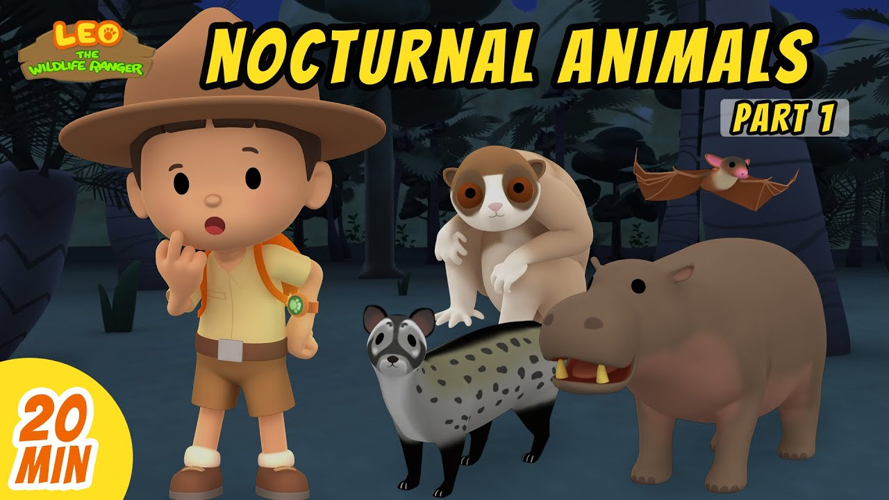 Nocturnal Animals Minisode Compilation (Part 1/2) - Leo the Wildlife Ranger | Animation | For Kids