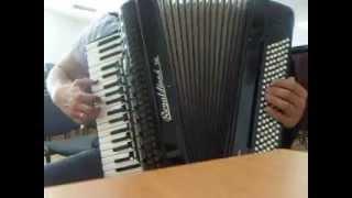 Москва по ком звонят твои колокола (С.Шнуров) на аккордеоне