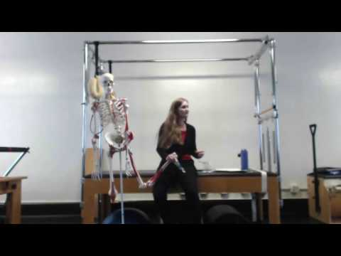 Upside-Down Pilates - PNF Pilates of the Feet- Part 2