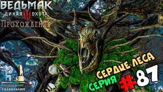 Ведьмак 3: Дикая Охота | Прохождение cерия #87 | Сердце леса