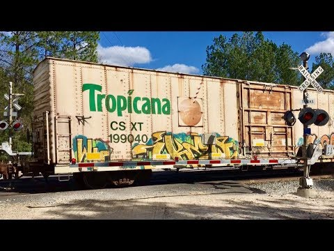 Fast CSX Freight Trains At Level Crossing, Feat: Stupid Orange & Millenniumforce  