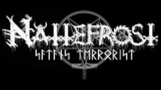 Watch Nattefrost Mass Destruction video