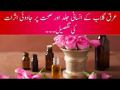 Effect of Rosewater on Your Skin and The Medical Benefits of it Health Guide with Shadab Abbasi