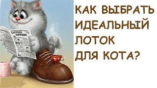 Выбираем идеальный лоток/горшок для кота