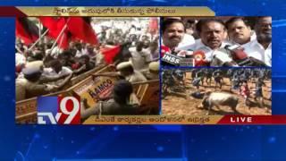 Tamil Nadu Bandh against Jallikattu Ban - TV9