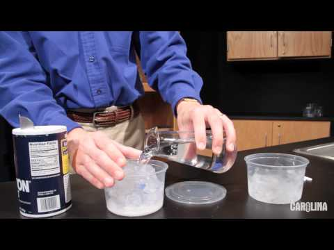 Ice Cream And Freezing Point Depression: A Carolina ChemKit