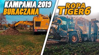 ㋡☆ Jeszcze raz kopanie buraków!㋡☆ Ropa w akcji☆Kampania Buraczana☆ Ropa Tiger 6㋡☆