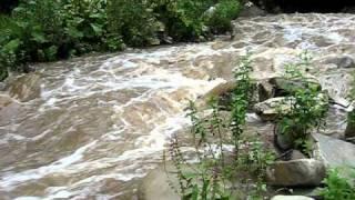 На охоту в Грузии(охота., 2010-08-15T13:18:46.000Z)