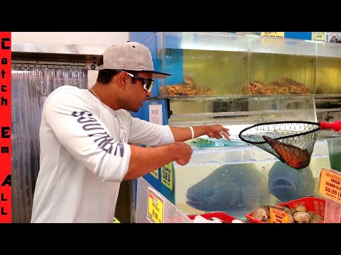 SAVING FISH From EXOTIC FOOD MARKET!