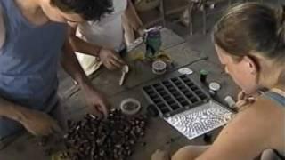 Séjour 2002 en Haïti (partie 1/3)