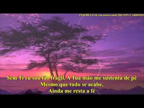 Milton Cardoso - Tu podes (LYRIC)