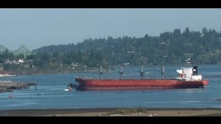 Time Lapse of Cargo Freighter Ship - Docking - Crane Loading - Departing ~ Coos Bay Oregon
