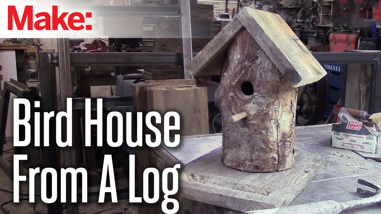 Diresta Log Bird House Youtube