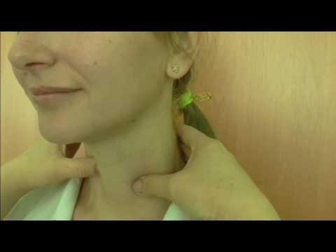 Пальпация щитовидной железы -техника и результаты пальпации
