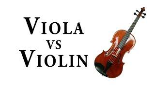VIOLA vs. VIOLIN