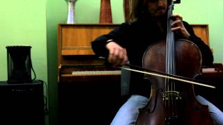 "The beatles ""I want to hold your hand"" Cello cover"
