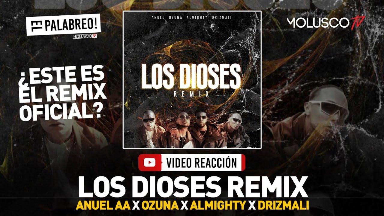 """Se Piratea """"Los Dioses Remix� con Almighty, Drizmali, Ozuna y Anuel #ElPalabreo"""