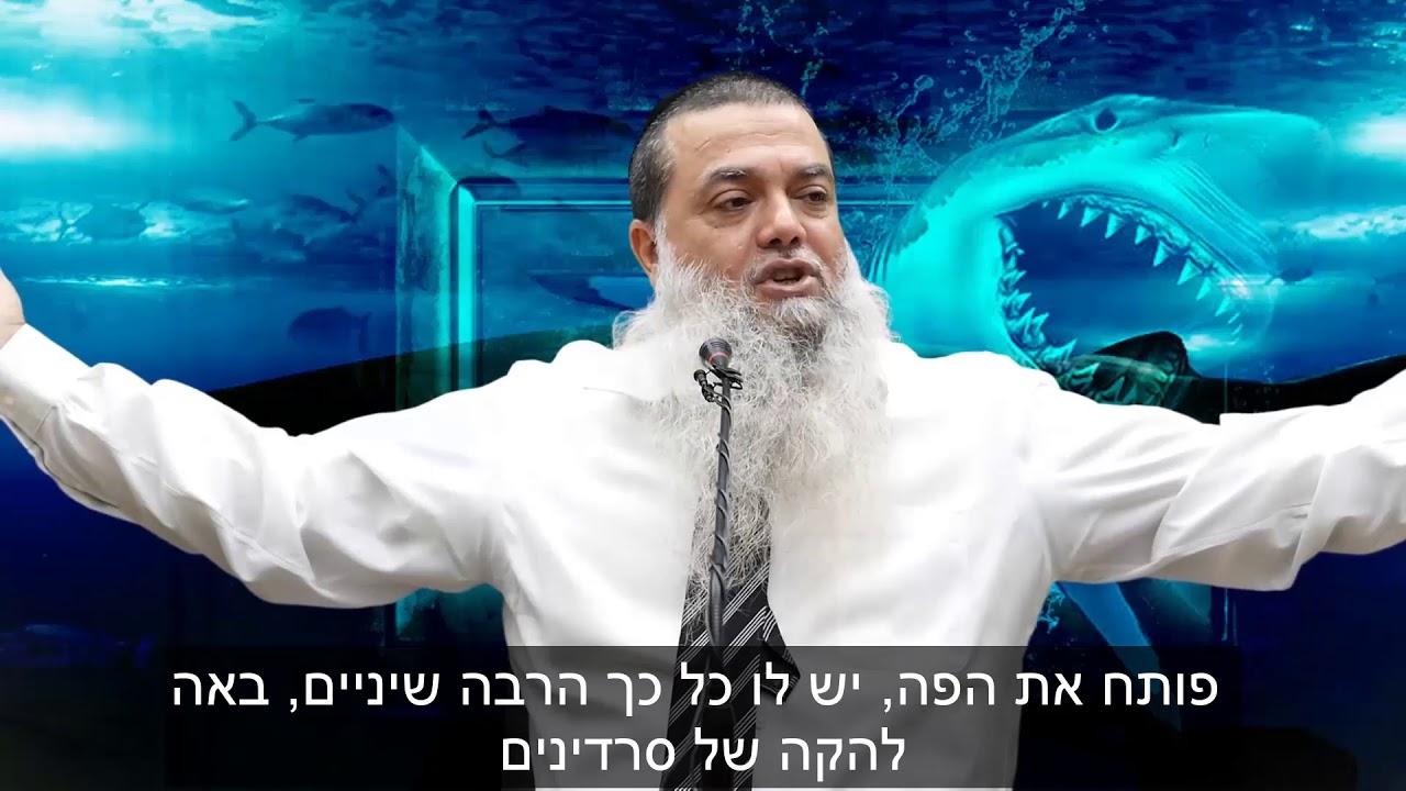 הרב יגאל כהן - קצרים | כסף לא יחסר לך – אם תבטח בקדוש ברוך הוא [כתוביות]