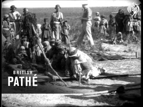 """Women Of Persia Known On Old Database As """"The Lure Of The East"""" (1931) -  YouTube"""