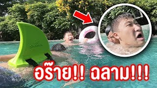 คุณเป็นสายไหนในสระน้ำ ? ฮามาก