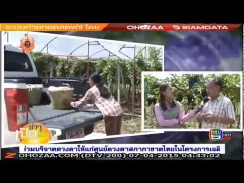tv5 korat 7 4 2558 17 0440 สกู๊ปเกษตรวิถีไทย ปลูกองุ่นปลอดสารพิษ แหล่งท่องเที่ยววังน้ำเขียว