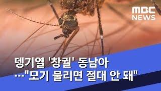 뎅기열 '창궐' 동남아…