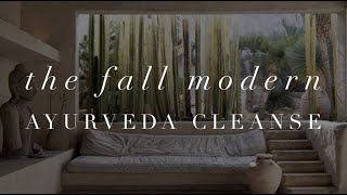 Michelle Mazur life wellness - The fall Modern Ayurveda Cleanse Challenge