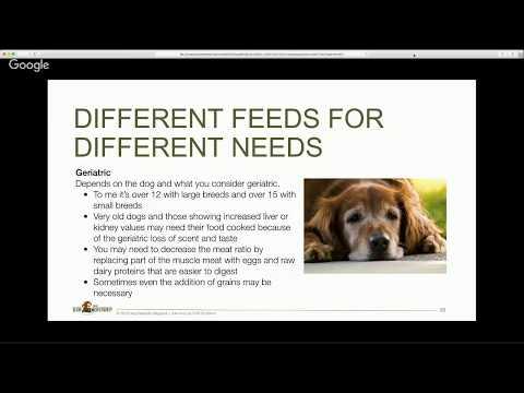 Here's Julie Anne Lee DCH, RCSHom on how to make is easier on your older dog .
