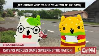 Cats Vs Pickles Presents: CatNN Cat Craze!