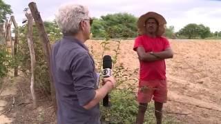 Profissão Repórter | Paraíba tem o primeiro cultivo legal de maconha para uso medicinal no Brasil