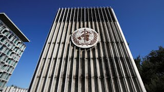 Les membres de l'OMS s'accordent pour une enquête indépendante sur la réponse à la pandémie