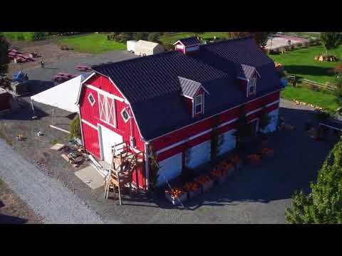 Aerial video: Corn maze at Stocker Farms in Snohomish