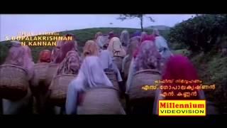 Malayalam Film Song | Kurumaali Kunninu | Lelam | M.G.Sreekumar, Sujatha Mohan