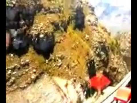 Diamond DA20 mountain flying
