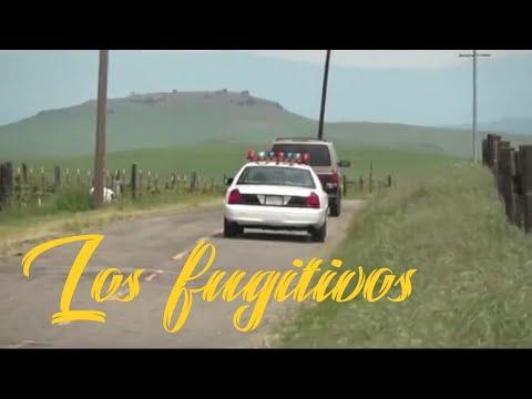 Ver Los fugitivos película completa en Español