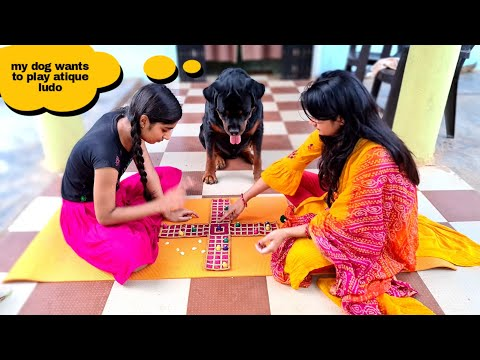 my dog wants to play with sapna and anshu|funny dog videos.