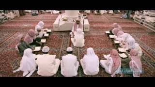 2- حلقات القرآن الكريم