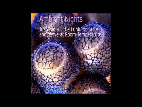 AMBIENT NIGHTS - PART 25 - Just add a Little Funk for Taste and Serve at Room Temperature