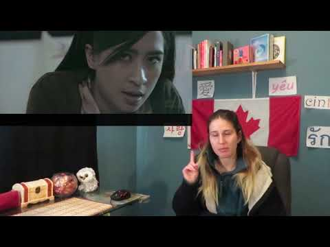 Ara-Bunga MV Reaction