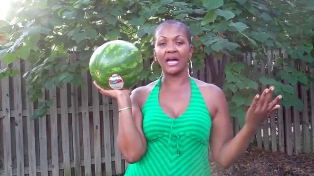 how to pick and cut a watermelon